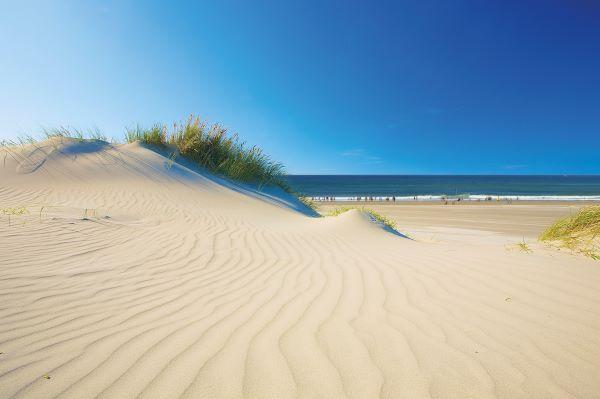 Plage_Dune